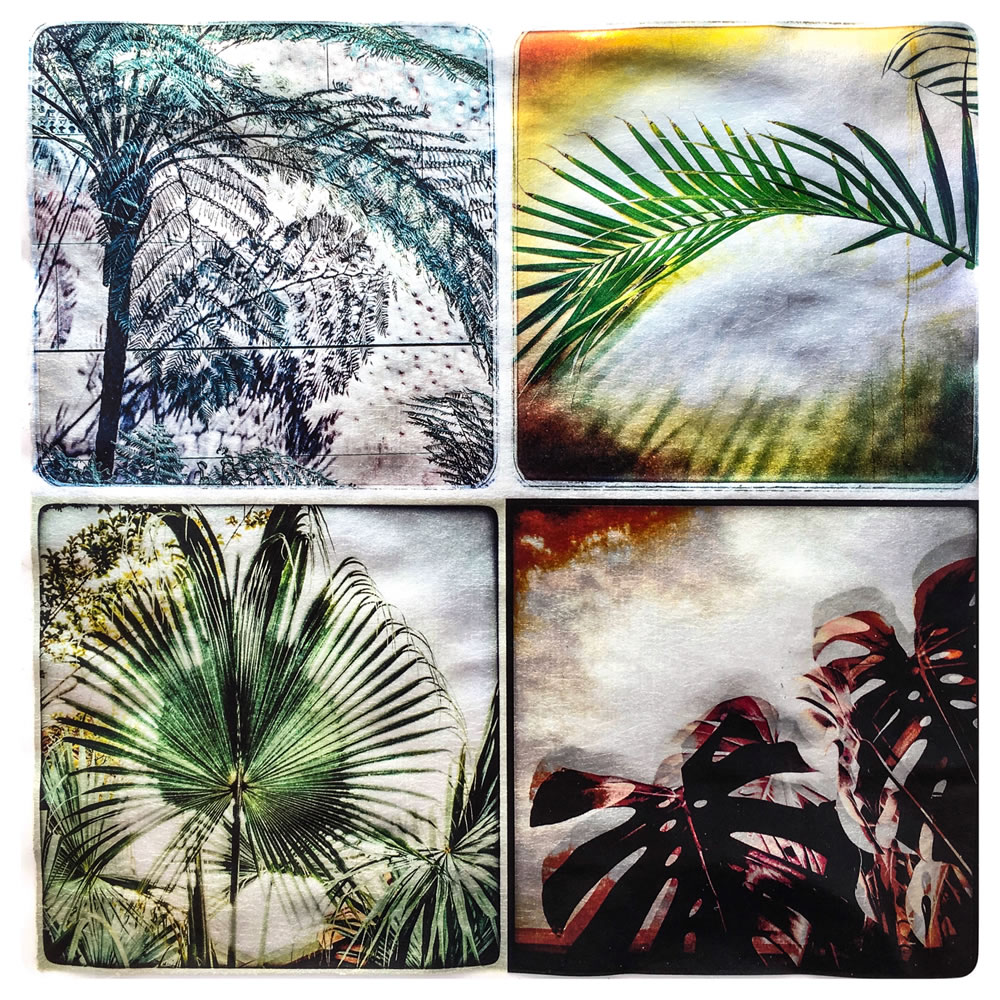 Three Palms & Monstera Quadtych